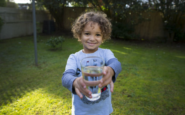 Watercare ranks highly among Australasian counterparts