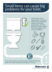Poster that says: Small items can cause big problems for your toilet.