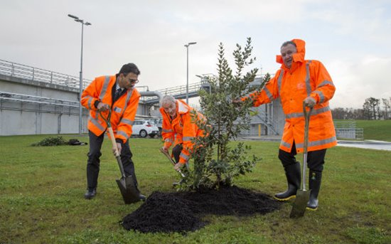 Watercare chief executive Raveen Jaduram, Auckland Mayor Phil Goff and Hon Shane Jones plant trees at the Māngere Wastewater Treatment Plant.